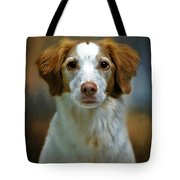 Portrait Of Gracie Tote Bag by Stephanie Calhoun