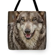 Portrait Of Gray Wolf Tote Bag