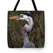 Portrait Of Great Blue Heron Tote Bag