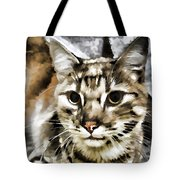 Portrait Of Homeless Tote Bag