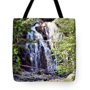 Portrait Of Houston Brook Falls Tote Bag