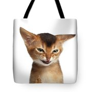 Portrait Of Kitten With Showing Middle Finger Tote Bag by Sergey Taran