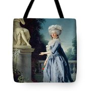 Portrait Of Marie-louise Victoire De France Tote Bag by Adelaide Labille-Guiard
