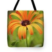 Portrait Of Orange Symphony Tote Bag
