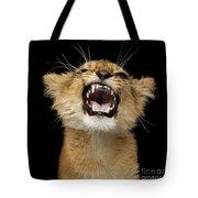 Portrait Of Roaring Little Lion Tote Bag by Sergey Taran