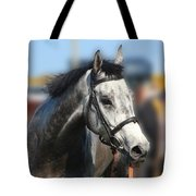 Portrait Of The Grey Race Horse Tote Bag