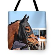 Portrait Of The Horse In The Hood Tote Bag