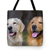 Portrait Of Two Young Beauty Dogs Tote Bag