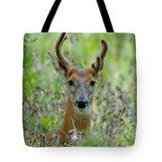Portriat Of Male Deer Tote Bag