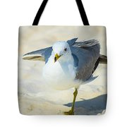Pose For The Camera  Tote Bag