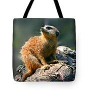Posing Meerkat Tote Bag