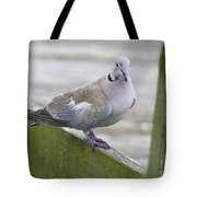 Posing On The Fence Tote Bag