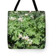 Potato Flower Agriculture Spring Scene Tote Bag