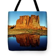 Pothole Reflections - Arches National Park Tote Bag
