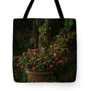 Potted Flowers Tote Bag
