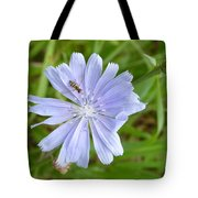 Powder Blue Chicory Tote Bag