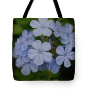 Powder Blue Flowers Tote Bag