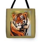 Power And Grace Tote Bag