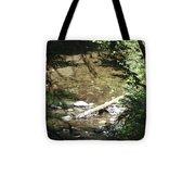 pr 134 - Babbling Brook Tote Bag