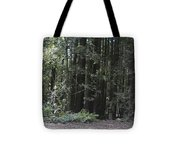 pr 137 - Big Trees Tote Bag