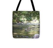 pr 164 - Mountain River Tote Bag