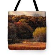 Prairie Autumn Stream Tote Bag