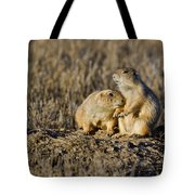 Prairie Dog Couple Tote Bag
