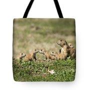 Prairie Dog Family 7270 Tote Bag