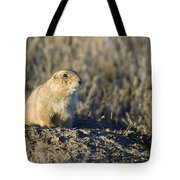 Prairie Dog Watchful Eye Tote Bag