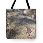 Prairie Lizard _ 1a Tote Bag