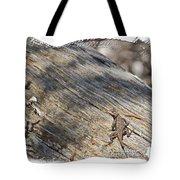 Prairie Lizard _ 1b Tote Bag