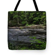 Prairie River Log Jam Tote Bag