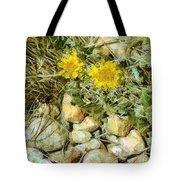 Prairie Rock Garden Tote Bag