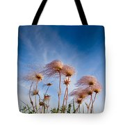 Prairie Smoke Tote Bag
