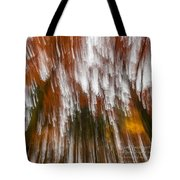 Praise You In This Storm Tote Bag