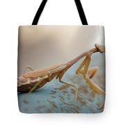 Praying Mantis Close Up Tote Bag