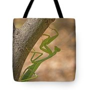 Praying Mantis On The Hunt Tote Bag