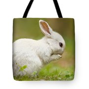 Praying White Rabbit Tote Bag