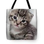 Precious Baby Tote Bag