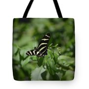 Precious Black And White Zebra Butterfly In The Spring Tote Bag