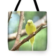Precious Little Yellow Parakeet In The Wild Tote Bag