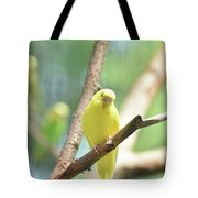 Precious Yellow Budgie Parakeeet In The Wild Tote Bag