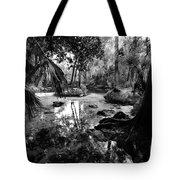Precolumbian Florida Tote Bag