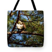 Preening Bald Eagle Tote Bag