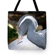 Preening Bird Tote Bag