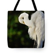 Preening Egret Tote Bag