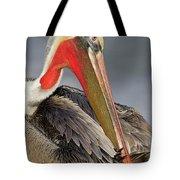 Preening Pelican Tote Bag