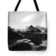Prehistoric Land Tote Bag
