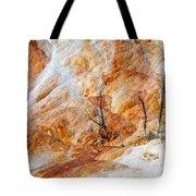 Prehistoric Trees Tote Bag