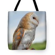 Preparing For Flight Tote Bag